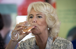 The Duchess of Cornwall tastes a locally produced wine at Newquay Fire Station as she meets residents from Tregunnel Hill, Cornwall, a mixed-use neighbourhood built on Duchy of Cornwall land in Newquay comprising open-market and affordable homes.