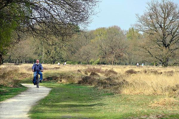 Nederland, Usselo, Haaksbergen, 3-4-2014Hoek over ontluikende lente op de hei. Buurserzand. Fietsers maken een tochtje tijdens het mooie voorjaar.Foto: Flip Franssen/Hollandse Hoogte