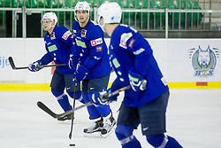 Jan Mursak, Anze Kopitar during practice session of Slovenian National Ice Hockey Team prior to the IIHF World Championship in Ostrava (CZE), on April 21, 2015 in Hala Tivoli, Ljubljana, Slovenia. Photo by Vid Ponikvar / Sportida