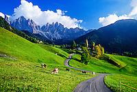 St. Magdalena, Dolomites, Sudtirol region, Italy
