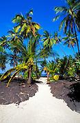 Sand path through lava field and palm trees at Pu'uhonua O Honaunau National Historic Park (City of Refuge), Kona Coast, Hawaii USA