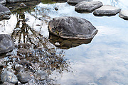 rock with tree reflecting in the water of a pond in the Japanese Showa Kinen park garden Tokyo
