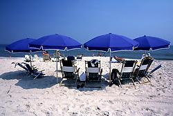 D. Ross Cameron 8/84<br /> <br /> A semi-circle of beach umbrellas at North Shores, Rehoboth Beach, Del.