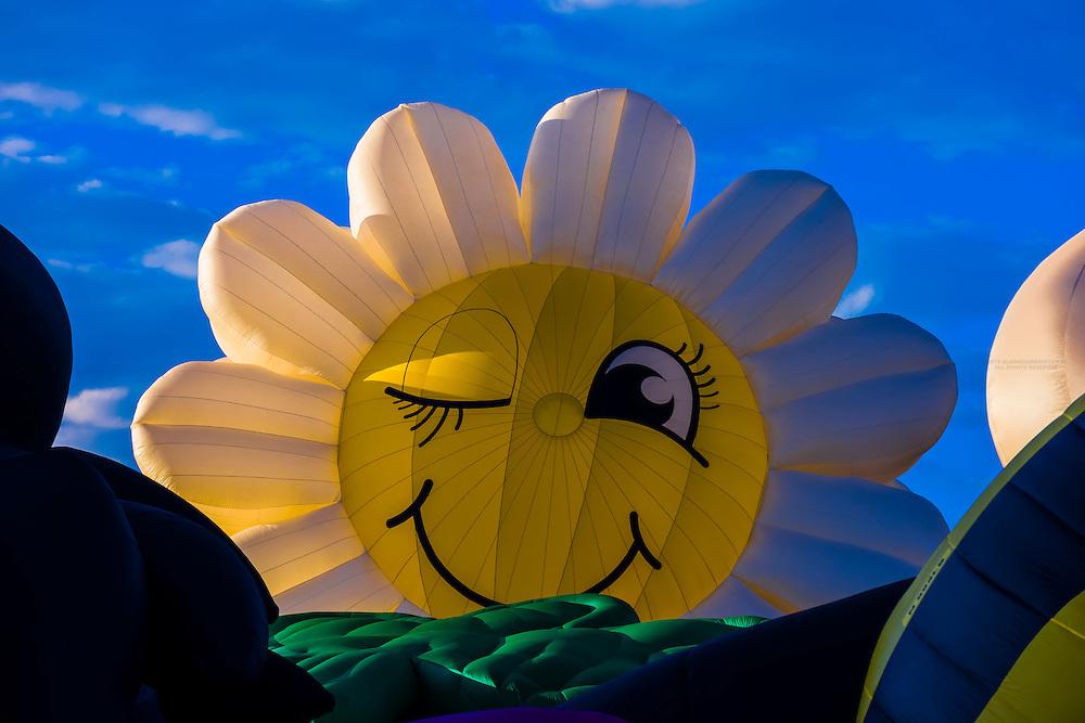 Special shape balloons (Miss Daisy), Albuquerque International Balloon Fiesta, Albuquerque, New Mexico USA.