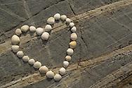 Shells form a heart on a stone, Bohuslän, Sweden