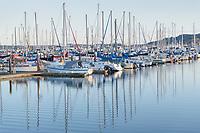 Cape Sante Marina Anacortes Washington