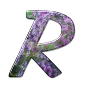 The Capitol Letter R Part of a set of letters, Numbers and symbols of 3D Alphabet made with a floral image on white background