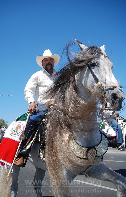 Robbie Gonzalez high-steps his magnificent gray horse for the crowds watching the North Main Street mini-parade. The 102nd California Rodeo Salinas opened Thursday night, July 19 for a four-day run.