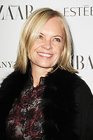 LONDON - OCTOBER 31: Mariella Frostrup attended the Harper's Bazaar Women of the Year Awards at Claridge's Hotel, London, UK. October 31, 2012. (Photo by Richard Goldschmidt)