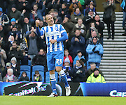 Brighton striker, Bobby Zamora (25) scores to make it 1-0 during the Sky Bet Championship match between Brighton and Hove Albion and Huddersfield Town at the American Express Community Stadium, Brighton and Hove, England on 23 January 2016.