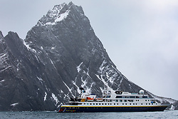 NG Orion Off Point Wild, Elephant Island