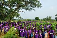 School children in a corn field behind their school.<br /> Iriya, South Sudan. 01/07/2011.