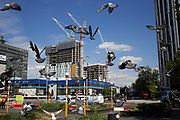 Pigeons flying around Elephant and Castle, London, UK. The area is now subject to a master-planned redevelopment budgeted at £1.5 billion. A Development Framework was approved by Southwark Council in 2004. It covers 170 acres and envisages restoring the Elephant to the role of major urban hub for inner South London.