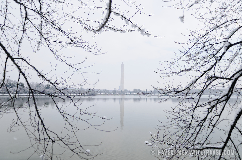 The Washington Monument stands out in the distance, reflected on the still waters of the Tidal Basin and framed by bare branches of the Yoshino Cherry Trees that provide the cherry blossom blooming in the spring.