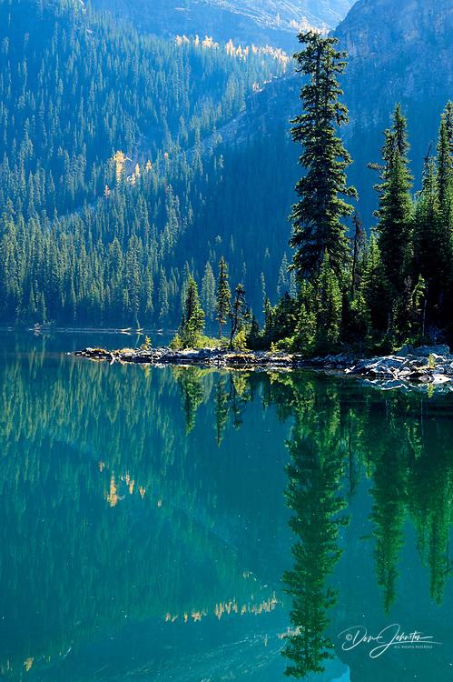 Forested slopes reflected in Lake O'Hara, Yoho National Park, BC, Canada