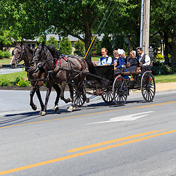 Intercourse, PA - June 12, 2016: Old Order Amish youths use horse drawn wagons as their primary transportation in rural Lancaster County, Pennsylvania.