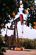 Oil Well in the middle of an orange field, Central Valley, Southern California, USA.