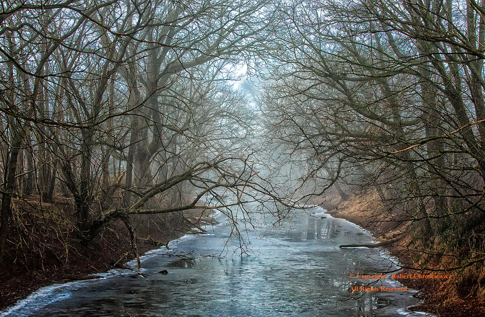 Winters Fog and Ice: Through the winter fog, barren trees crowd over a narrow stream with a thin shell of ice, Agassiz British Columbia Canada.