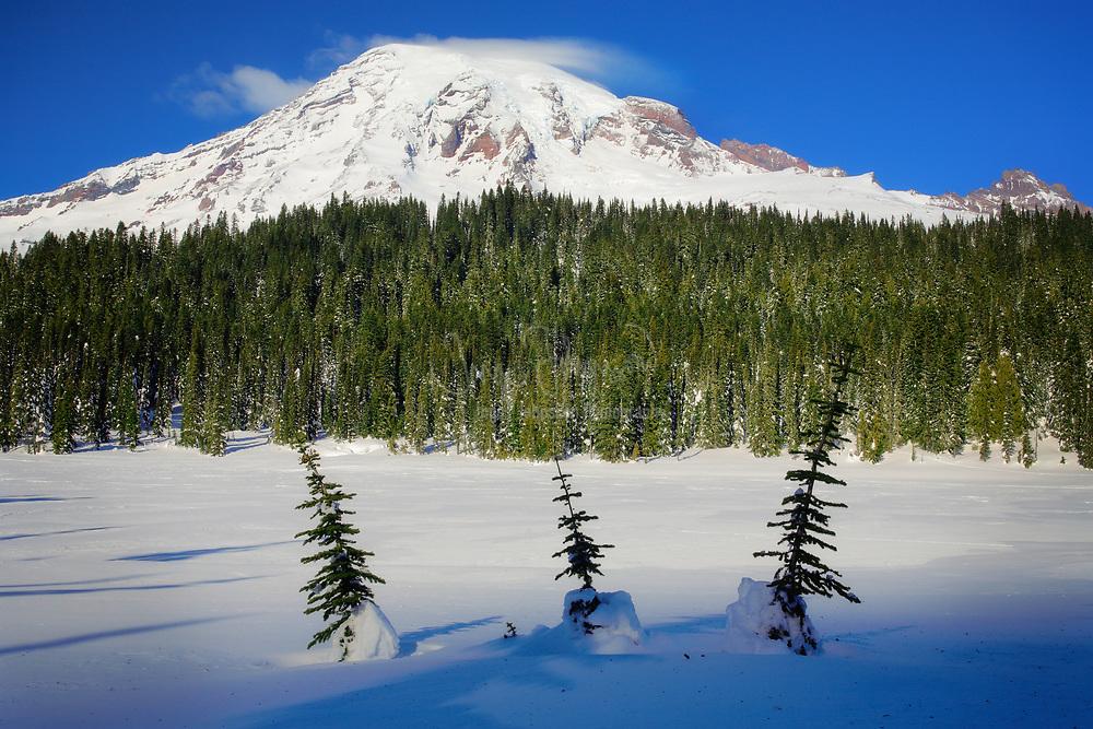 Mt Rainier at Reflection Lakes with three small trees