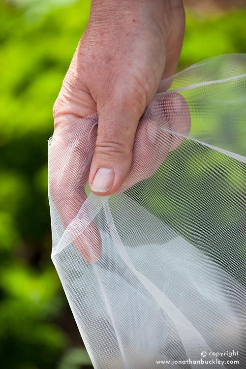 Netting - Tendamesh
