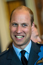 The Duke of Cambridge attends a reception at Buckingham Palace, London to mark the centenary of the Royal Air Force.