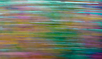 autumn colors blurred to a streak making a statement of the season passing by too quickly