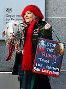 © Licensed to London News Pictures. 12/10/2012. Westminster, UK A woman with a knitted sheeps head stands outside the DEFRA (Department for Environment, Food and Rural Affairs) building.  A Rally on live animal transport held by Compassion in World Farming (CIWF) and RSPCA outside DEFRA today 12 October 2012. The groups handed in a petition and report urging ministers not to issue any more licences for live transport until legislation on journey times and port facilities is enforced. Photo credit : Stephen Simpson/LNP