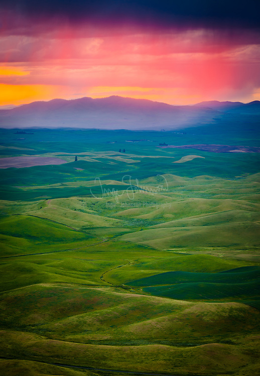 Steptoe Butte is a quartzite island jutting out of the silty loess of the Palouse hills in Whitman County, Washington. It is contained by Steptoe Butte State Park. The rock that forms the butte is over 400 million years old, in contrast with the 15–7 million year old Columbia River basalts that underlie the rest of the Palouse. Steptoe Butte has become an archetype, as isolated protrusions of bedrock, such as summits of hills or mountains, in lava flows have come to be called steptoes.