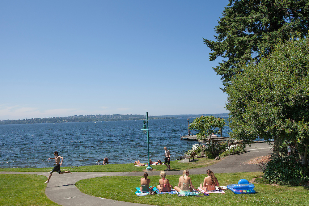 North America, United States, Washington, Kirkland, sunbathers on grass in Marsh Park on Lake Washington