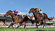 Chester Races 310813