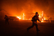 WINDSOR, CA - OCTOBER 27: Firefighters battle a wind-driven fire burning structures on a farm during the Kincade fire in Windsor, California on October 27, 2019. (Photo by Philip Pacheco/AFP)