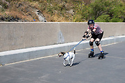 A teenage boy on roller skates wearing full protective gear is pulled along a walkway by a Jack Russell dog, Sunny Sands beach, Folkestone, Kent, UK. (photo by Andrew Aitchison / In pictures via Getty Images)