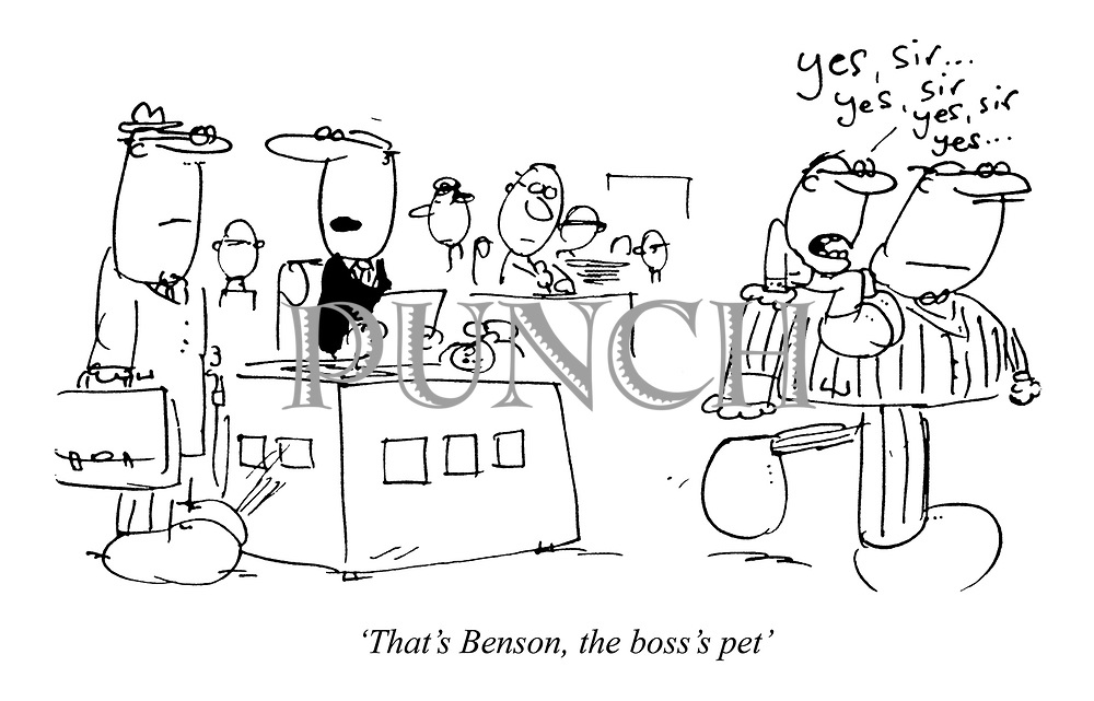 'That's Benson, the boss's pet'