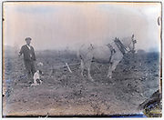 farmer working in the field with horse in front of plow and dog