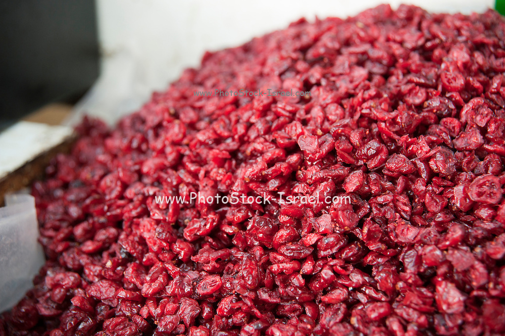 A pile of dried preserved Cranberries (Vaccinium Oxycoccos) AKA craisins