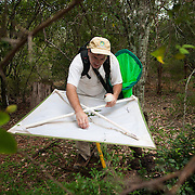 """A researcher, Dr. Steven Lingafelter, collects insects that have fallen onto his """"beating sheet""""after he has tapped on tree branches and other vegetations with a stick, Aguacate and Zapotén in Parque Nacional Sierra de Bahoruco"""
