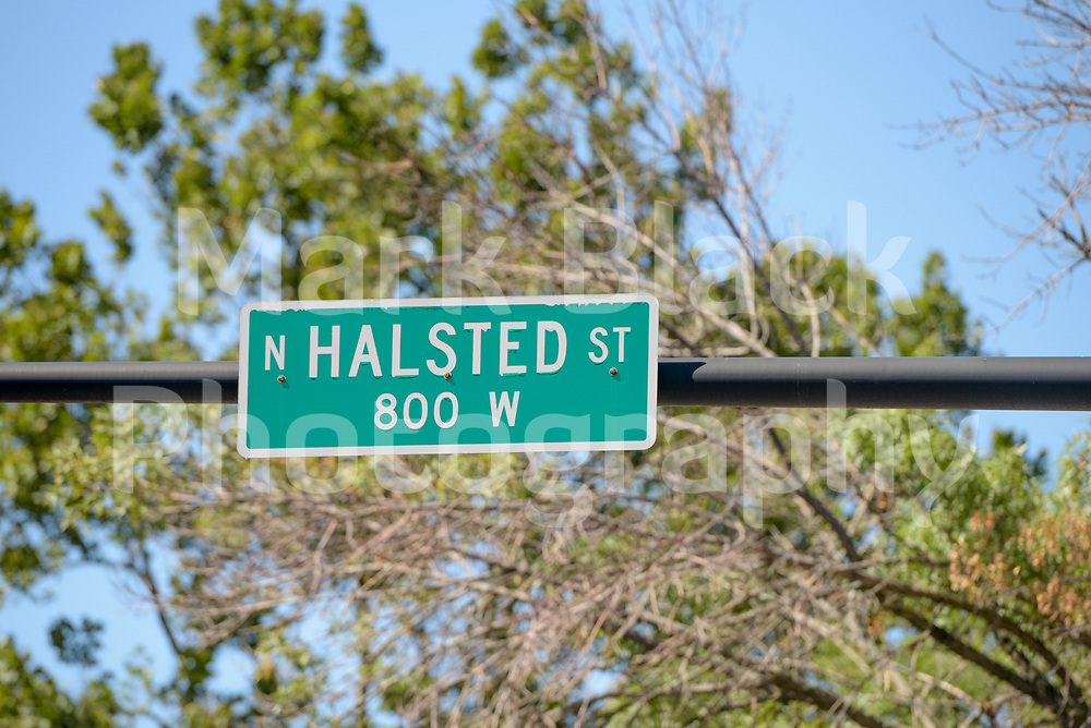 Halsted Street sign in Chicago on Friday, Sept. 4, 2020. Photo by Mark Black