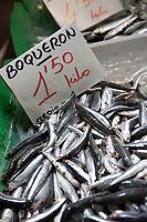 Fresh boqueron (white anchovy) are for sale at the daily Fish market in the Mercado Central in Castellon de la Plana in Spain.