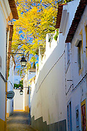 Narrow backstreet Evora, Portugal Portugal