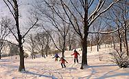 Városliget. Children skiing in the City park in the snow - Budapest Hungary