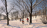 Városliget. Children skiing in the City park in the snow - Budapest Hungary .<br /> <br /> Visit our HUNGARY HISTORIC PLACES PHOTO COLLECTIONS for more photos to download or buy as wall art prints https://funkystock.photoshelter.com/gallery-collection/Pictures-Images-of-Hungary-Photos-of-Hungarian-Historic-Landmark-Sites/C0000Te8AnPgxjRg