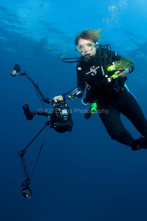 Dr. Sylvia Earle diving off the coast of Honduras.