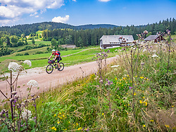 Mountain biker riding downhill through country road, Hinterzarten , Baden-Wuerttemberg, Germany