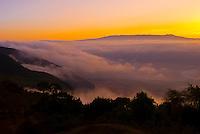 Ngorongoro Crater shrouded in fog after sunrise, Ngorongoro Conservation Area, Tanzania