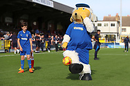 Haydon the Womble controlling the ball during the EFL Sky Bet League 1 match between AFC Wimbledon and Portsmouth at the Cherry Red Records Stadium, Kingston, England on 13 October 2018.