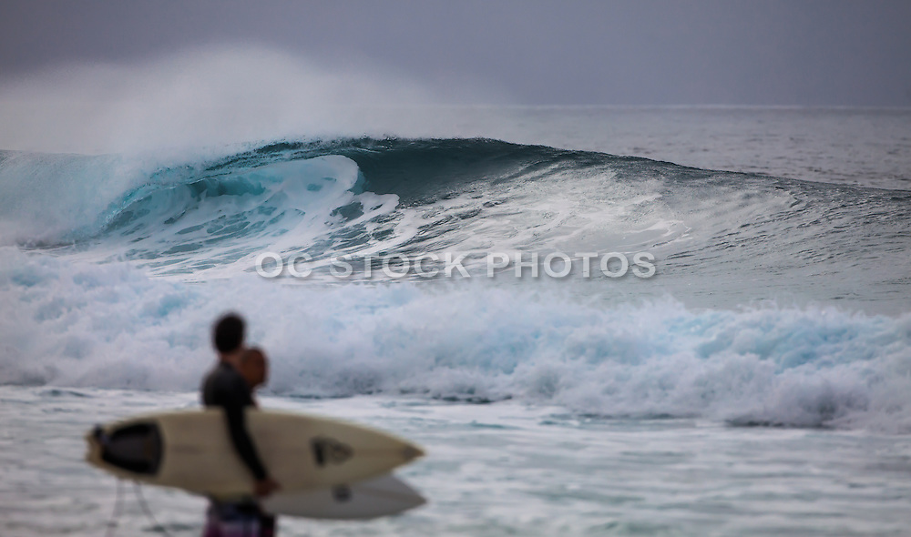 Waves and Surfers
