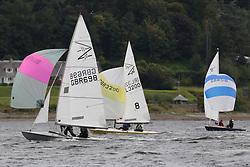 Marine Blast Regatta 2013 - Holy Loch SC<br /> <br /> Flying Fifteen Fleet<br /> <br /> Credit: Marc Turner / PFM Pictures