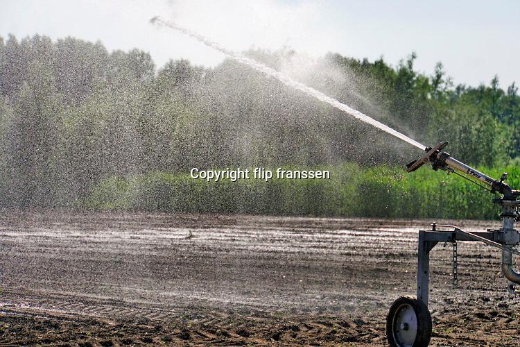 Nederland, Leuth, 21-5-2020  Een boer in de Ooijpolder beregent zijn akker met suikerbieten . De gezaaide zaadjes zijn   gekiemd, maar veel zijn daarna afgestorven vanwege een tekort aan vocht, water . De wel opgekomen plantjes zijn welliswaar erg klein en kwetsbaar maar met het beregenen zullen ze het wel redden denk hij . Hij graaft een zaadje op om te kijken of het inderdaad gekiemd is zodat hij weet datde droogte  de oorzaak is . Foto: Flip Franssen