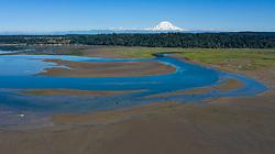 United States, Washington, Billy Frank Jr. Nisqually National Wildlife Refuge and Mt. Rainier