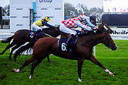 Spanish Star ridden by George Rooke and trained by P R Chamings - Ryan Hiscott/JMP - 30/09/2019 - PR - Bath Racecourse - Bath, England - Race Meeting at Bath Racecourse